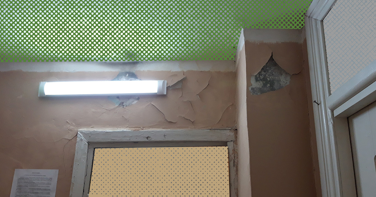 «Не нравится – иди в другой ВУЗ или выселяйся в квартиру»: студенты общежития БГУ о плесени и тараканах в комнатах