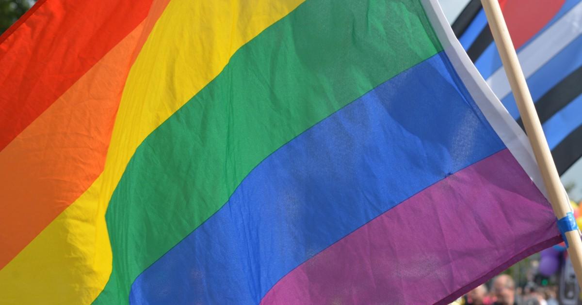 «Левада-центр»: почти 50% россиян выступили за равные права для геев.