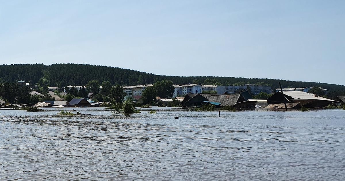 Дамбу прорвало? Виновата вырубка лесов? Важные вопросы о наводнении в Тулуне