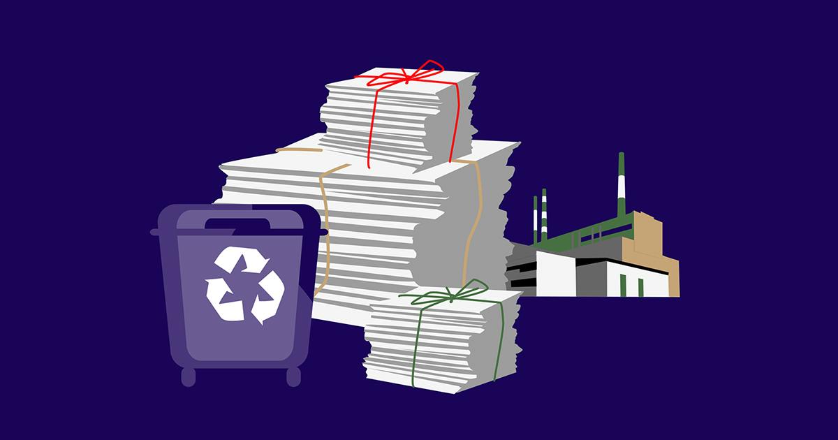 Спасать лес не радикальными методами: куда сдавать макулатуру вИркутске и какую бумагу покупать