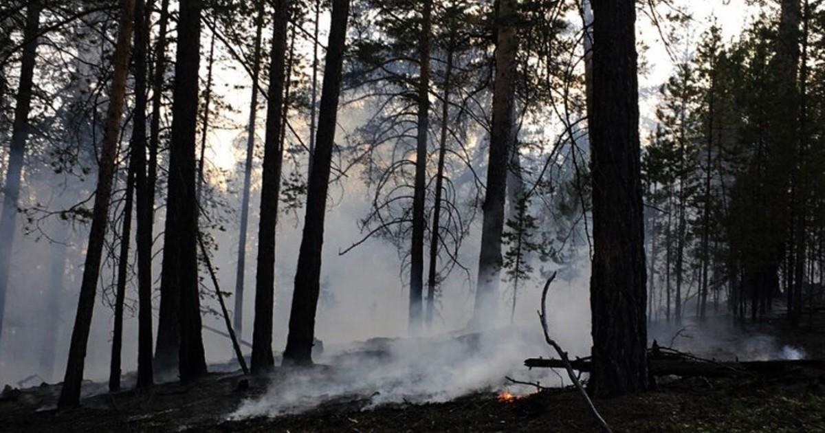 Прибайкальский нацпарк ограничил вход для туристов из-за пожаров