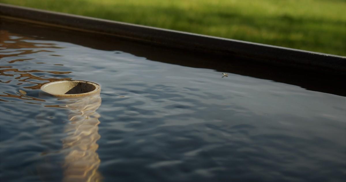 Жители Иркутска пожаловались на детей, купающихся в городском фонтане