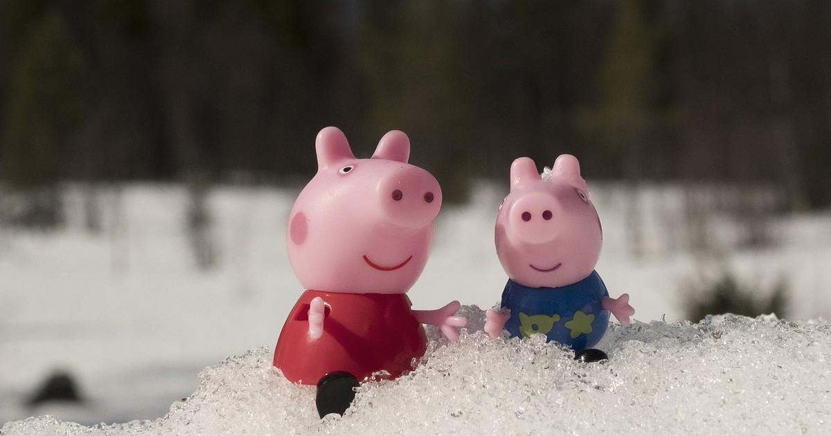 Иркутская пара поженилась в костюмах из мультфильма «Свинка Пеппа» - Верблюд в огне