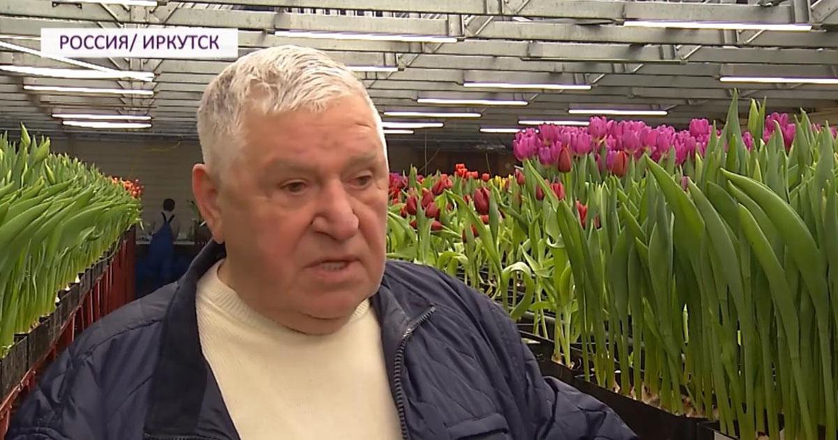 79-летний пенсионер из Иркутска выращивает тюльпаны на продажу. Сейчас у него 110 тысяч луковиц