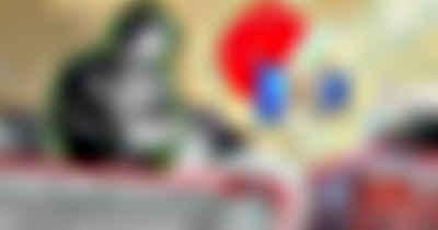 Команда-винегрет, сотни поручений и неясные преимущества. 100 дней «генерал-губернатора» Приангарья Игоря Кобзева - Верблюд в огне