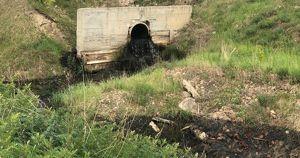 В Усолье-Сибирском в Ангару попала черная вода. Прорвало очистные