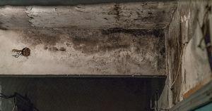В Братске сгорела крыша деревянного дома. Жильцы почти 3 месяца вычерпывают дождевую воду и не включают свет
