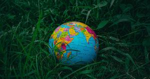 Как начать вести экологичный образ жизни