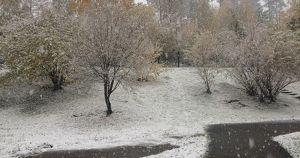 В Иркутской области пройдут дожди и мокрый снег