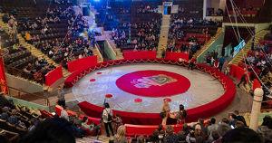 Цирк Удмуртии показал рождественское представление с козлами в свастиках по заказу епархии - Верблюд в огне