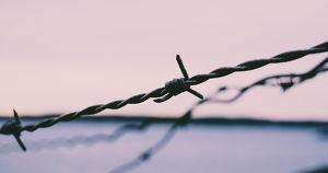 Еще двух сотрудников колонии в Приангарье отстранили от работы после сообщений о пытках