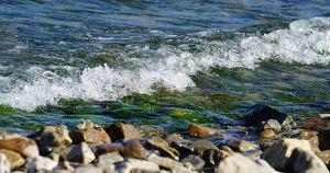 В Байкал сливали отходы без очистки: очевидцы сообщали о почернении воды