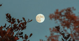 В воскресенье иркутяне смогут посмотреть на лунные кратеры в телескоп