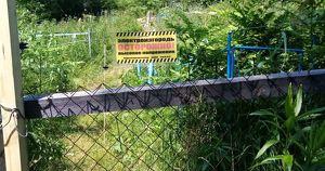 В Иркутской области на кладбище пришлось поставить электроизгородь - Верблюд в огне