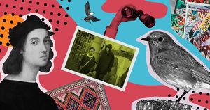 Афиша на выходные. Фестиваль птиц, лекция о комиксах и своп-вечеринка